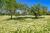 20070331-Mandelblüte-028
